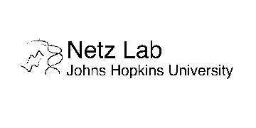 Netz Lab - Johns Hopkins School of Medicine logo